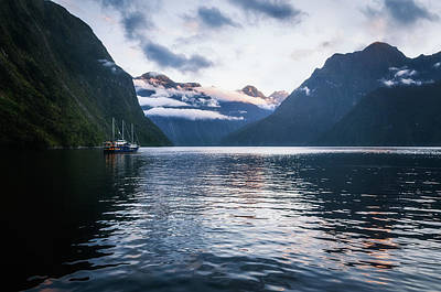 Photograph - Milford Sound Over Night Cruise At Harrison Cove by Daniela Constantinescu