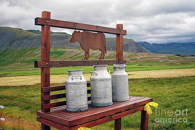Photograph - Milk Churns by Patricia Hofmeester