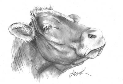 Drawing - Milk Cow by Jacki Kellum