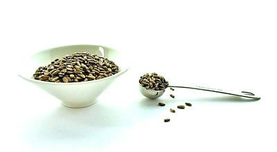 Milk Thistle Seeds Art Print