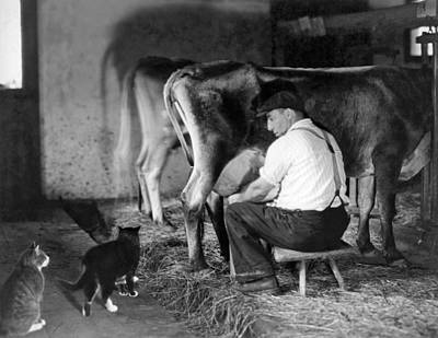 Milking Time On The Farm Art Print by Underwood Archives