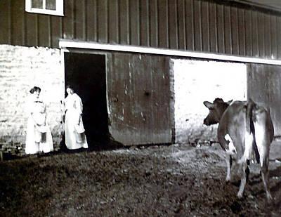Milkmaids Original