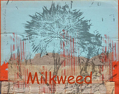 Milkweed Collage Art Print