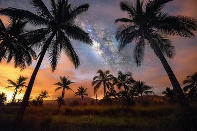 Photograph - Milky Palms by James Roemmling