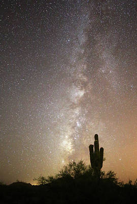 Photograph - Milky Way And Saguaro Cactus by Jean Clark
