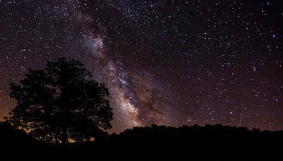 Milky Way And The Tree Art Print