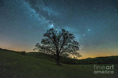Photograph - Milky Way Mountain by Robert Loe