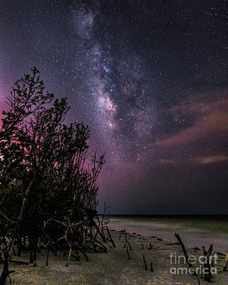 Photograph - Milky Way Over Beercan Island by Damon Powers
