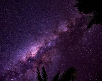 Photograph - Milky Way Over Mission Beach by Avian Resources