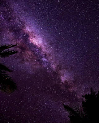 Photograph - Milky Way Over Mission Beach Vertical by Avian Resources