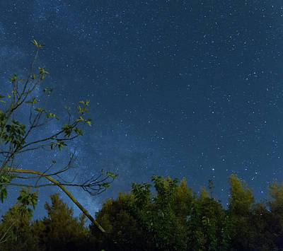 Milky Way Photograph - Milky Way Over The Forest by Iordanis Pallikaras