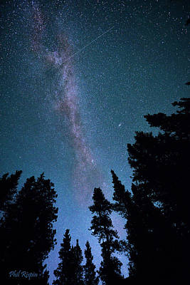 Photograph - Milky Way Over The Kananaskis by Phil Rispin