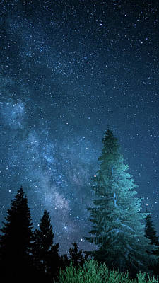 Photograph - Milky Way Pines Mount Shasta California by Lawrence S Richardson Jr