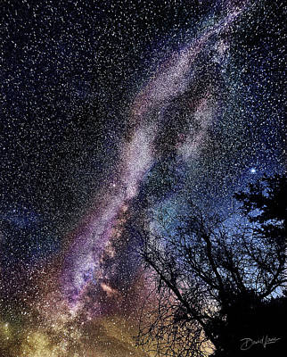 Photograph - Milky Way Splendor by David A Lane