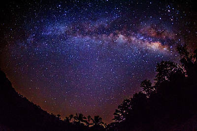 Angle Fishes Photograph - Milky Way Splendor by Vishwanath Bhat