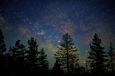 Photograph - Milky Way by Steph Gabler