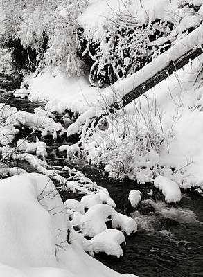 Mill Creek Canyon In Winter Art Print by Dennis Hammer