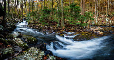 Mill Creek In Fall #2 Art Print
