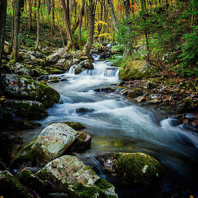 Mill Creek In Fall #3 Art Print