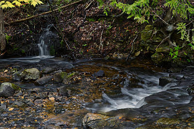 Photograph - Mill Creek by Richard Gregurich