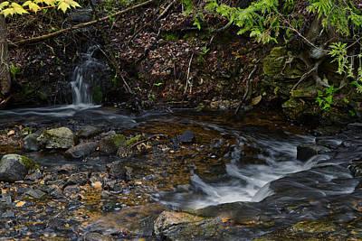 Photograph - Mill Creek by Richard Gregurich