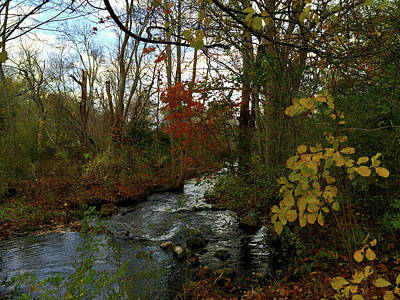Photograph - Mill Creek, Sandwich Massachusetts by Frank Winters