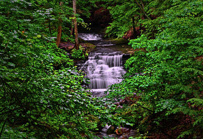 Photograph - Mill Creek Waterfalls 004 by George Bostian