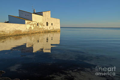 Mill House In Ria Formosa Art Print by Angelo DeVal