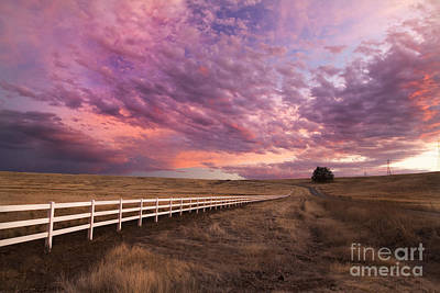 Photograph - Milleville Plains 2 by Randy Wood