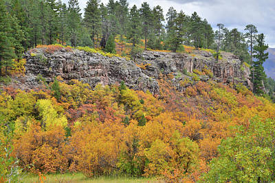 Photograph - Million Dollar Highway Fall Color by Ray Mathis