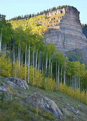 Photograph - Million Dollar Highway North Of Durango by Ray Mathis