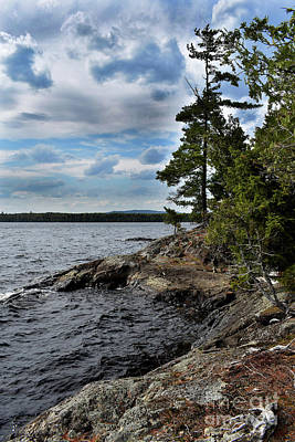 Photograph - Millonocket Lake Shore by Skip Willits
