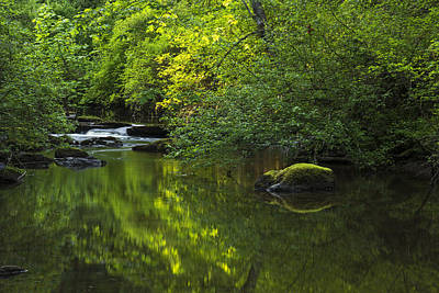 Photograph - Millstone River by Inge Riis McDonald