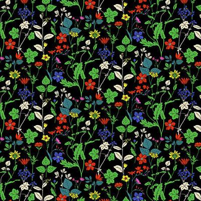 Black Background Digital Art - Milton Garden by Sholto Drumlanrig