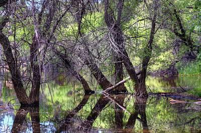 Watson Lake Photograph - Mind Games by Thomas  Todd