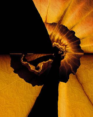 Mind Blowing Digital Art - Mindblown by Vic Eberly