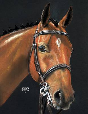 English Horse Pastel - Miner - Bay Horse Portrait by Heather Gessell