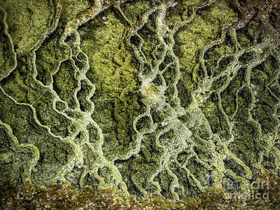Photograph - Mineral Abstract by Robert Bales