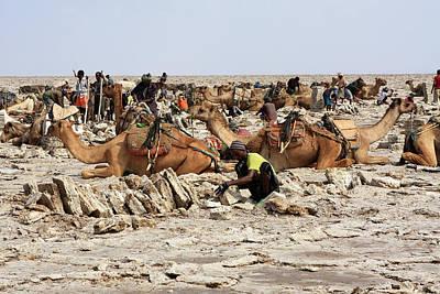Photograph - Miners Of The Danakil, Ethiopia by Aidan Moran