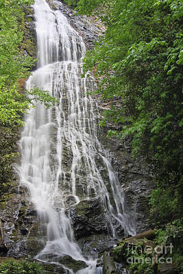 Photograph - Mingo Falls In The Spring by Jill Lang