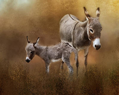 Photograph - Mini Donkey Mother And Baby by TnBackroadsPhotos