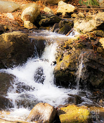Photograph - Mini Falls by Jorge Perez - BlueBeardImagery