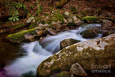Photograph - Mini Water Fall by Dave Bosse