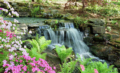 Mini Waterfall Art Print by Sandy Keeton