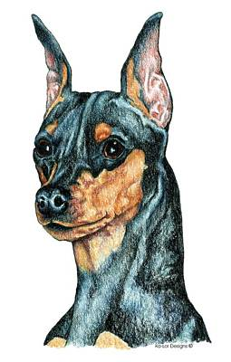 Pinscher Drawing - miniature Pinscher, Black and Tan by Kathleen Sepulveda