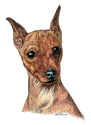 Pinscher Drawing - Miniature Pinscher, Min Pin by Kathleen Sepulveda