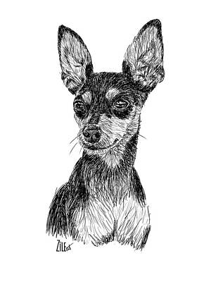 Digital Art - Miniature Pinscher @zaydaandzofie by ZileArt