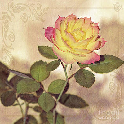 Photograph - Miniature Rose Vintage Style By Kaye Menner by Kaye Menner