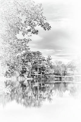 Photograph - Minimalist Fall Scene In Black And White by Anita Pollak