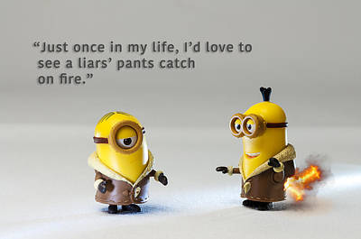 Photograph - Minion Quote 14 by Tim Nichols